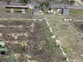 荒れていた土地も着々と畑や庭に