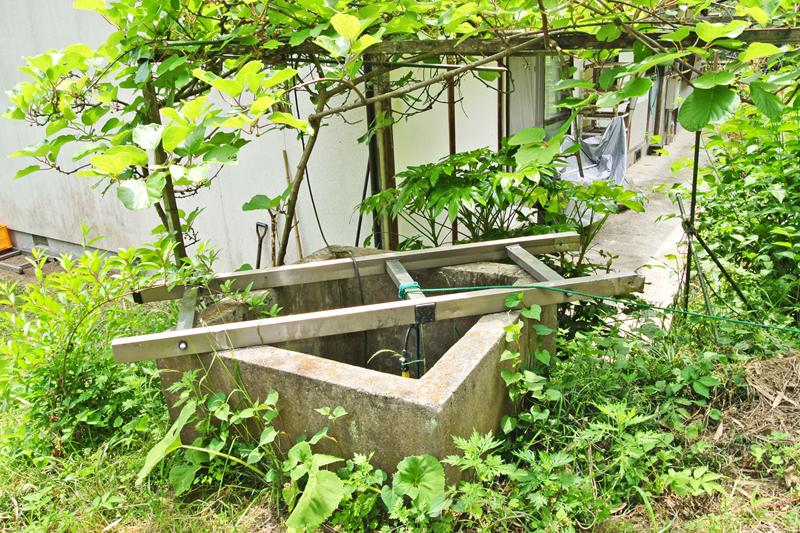 井戸(ポンプ付き)