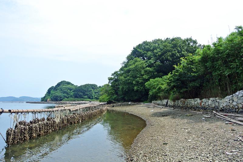 近くの海辺