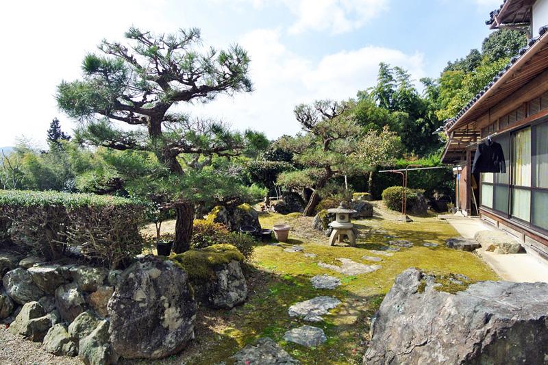松の立派な庭