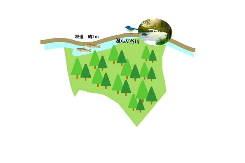 敷地図bk08