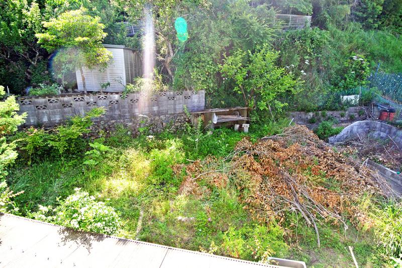 地続きの菜園スペース