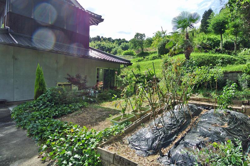 敷地内の菜園スペース