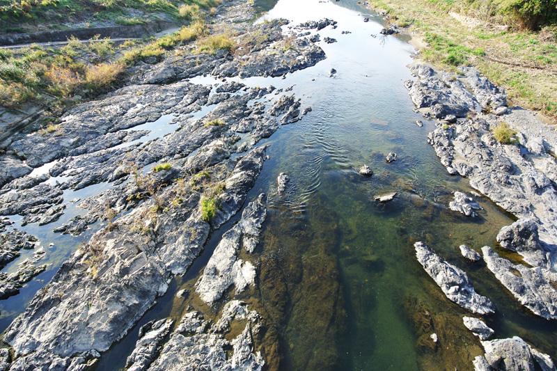 散歩コースなどに最適な吉野川まで徒歩約1分