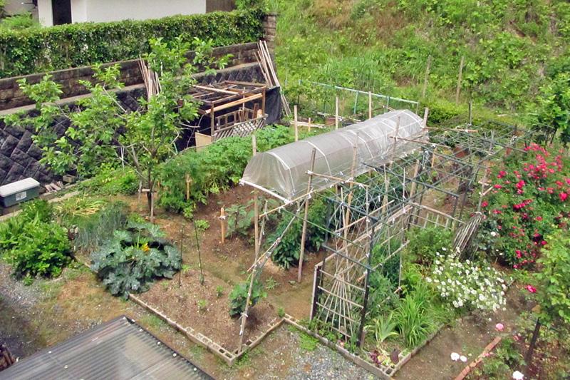 菜園スペース