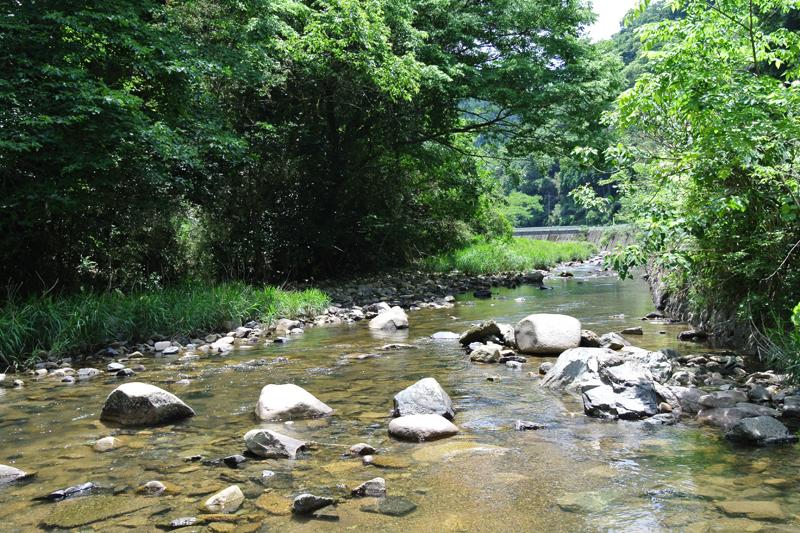 物件前の川