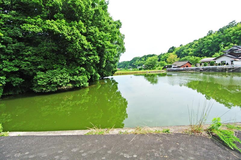 敷地前の池