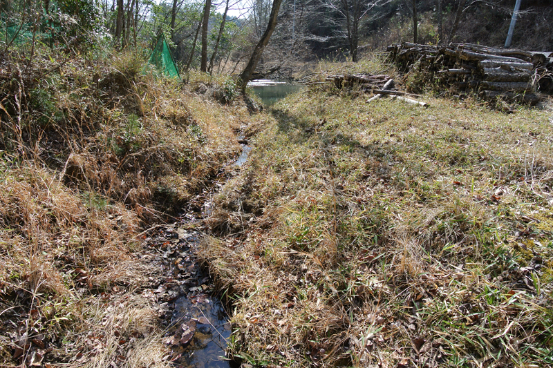 敷地内を流れる沢水