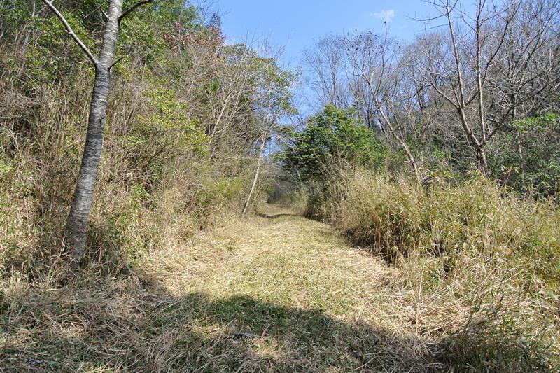 敷地奥へと続く林道
