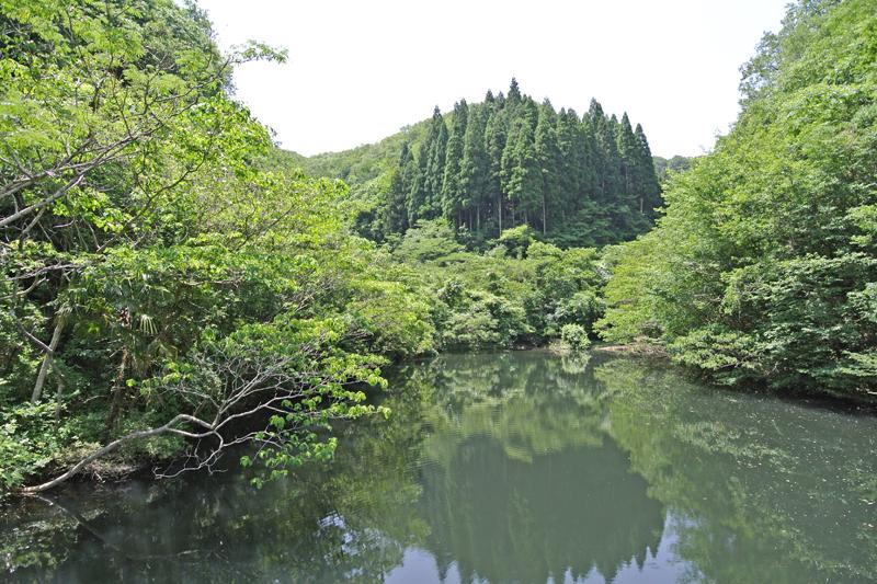 すぐ近くにある池