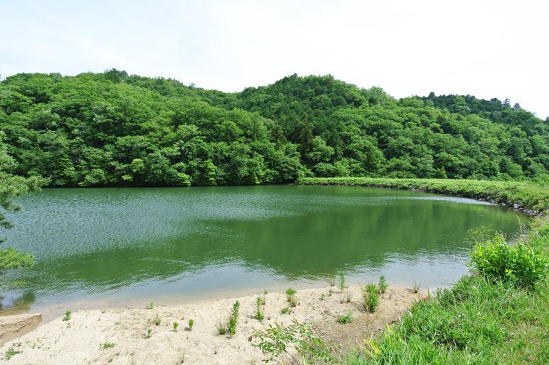 隣接する池