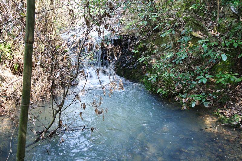 物件沿いを流れる川