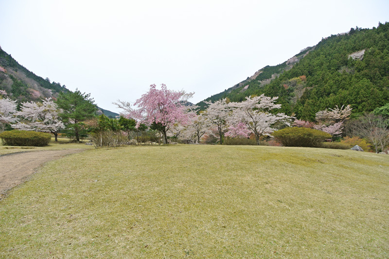津川ダム公園