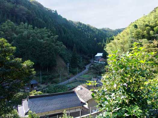 山から集落方向を見下ろす