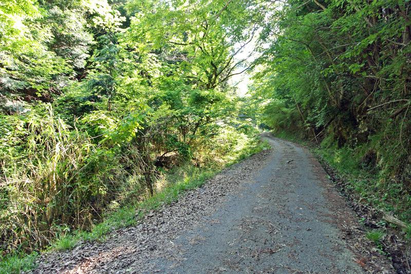 物件そばの舗装林道