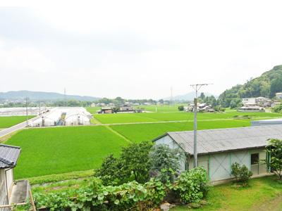 家からの見晴らし 田園風景を一望