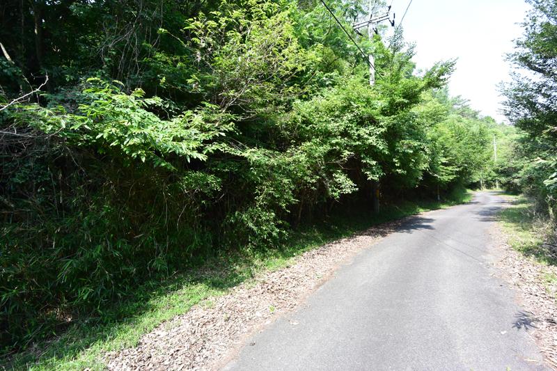 接道する舗装公道