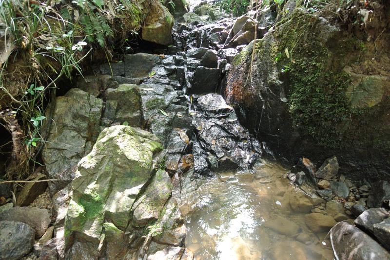 物件沿いを流れる沢水