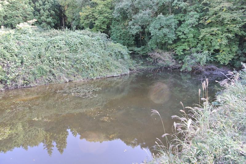 すぐ横にあるため池