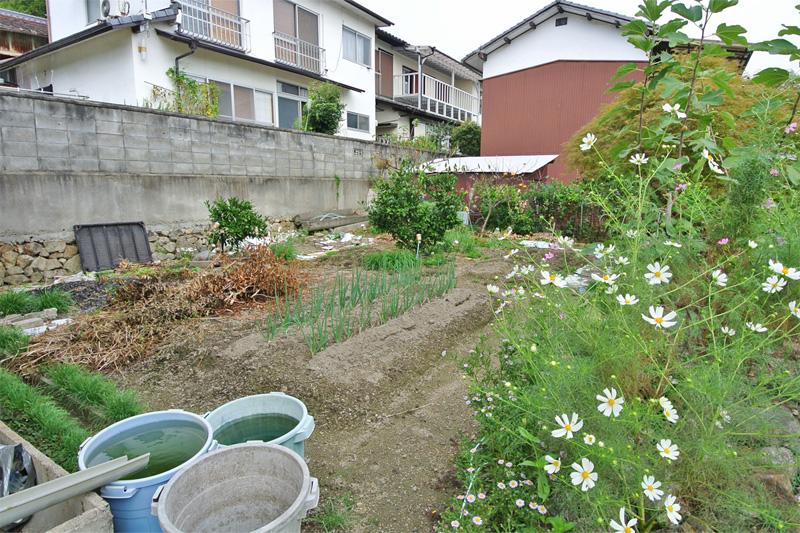 敷地内にある菜園スペース
