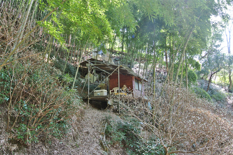 山林内の手作り小屋